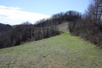 boschi e prati tra serralunga e ponzano